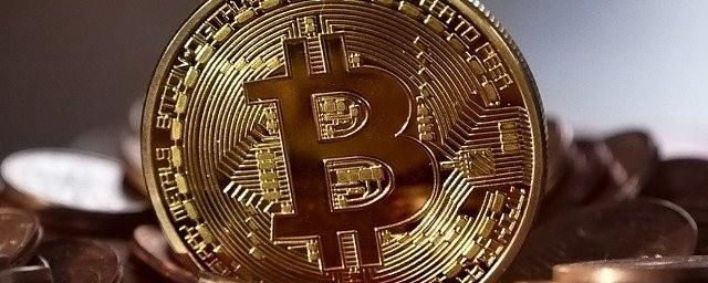 Are you a crypto newbie? Crypto